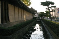 nice-is-kyoto-in-a-walk-208